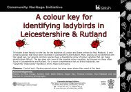 Ladybird ID Key - Leicestershire County Council