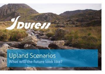 DURESS-Upland-Scenarios-Report