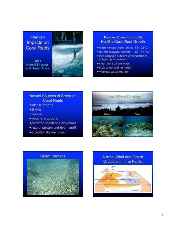 Human Impacts on Coral Reefs Human Impacts on Coral Reefs