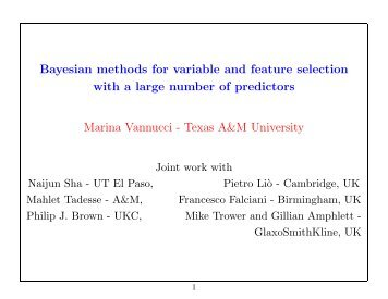 Bayesian methods for variable and feature selection with a large ...