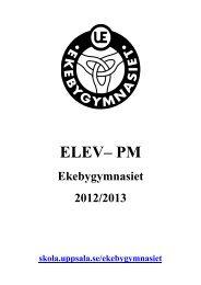 ELEV– PM - Uppsala kommun