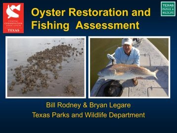 Oyster Restoration and Fishing Assessment - CCA Texas