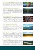 cuidaR das zonas úmidas - Ministério do Meio Ambiente - Page 7