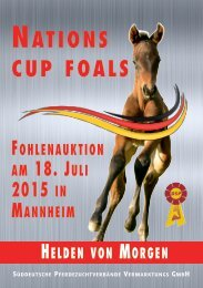 Fohlenauktion Nations cup foals Mannheim - 18. Juli 2015