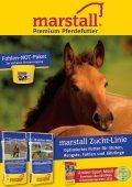 Fohlenauktion Nations cup foals Mannheim - 18. Juli 2015 - Seite 4