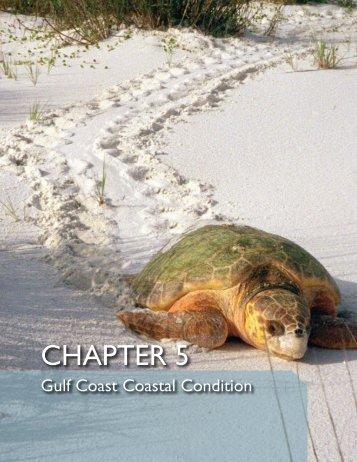 National Coastal Condition Report IV - Sarasota.WaterAtlas.org