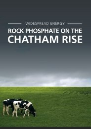 ROCK PHOSPHATE ON THE - Squarespace
