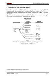 Ekstruderte produkter-1 Metodikken for ... - Materialteknologi