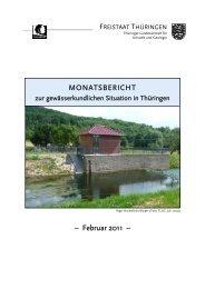 Februar 2011 - Thüringer Landesanstalt für Umwelt und Geologie