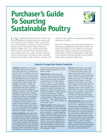 Purchaser's Guide To Sourcing Sustainable Poultry