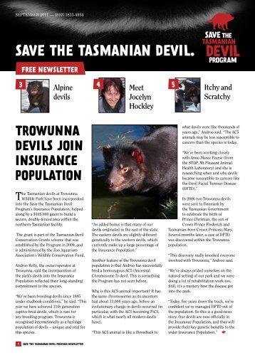 devils @ cradle - Save the Tasmanian Devil