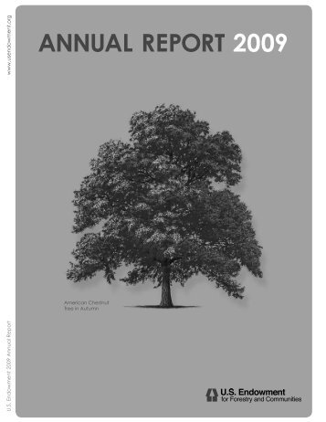 annual report 2009 - US Endowment for Forestry & Communities, Inc.