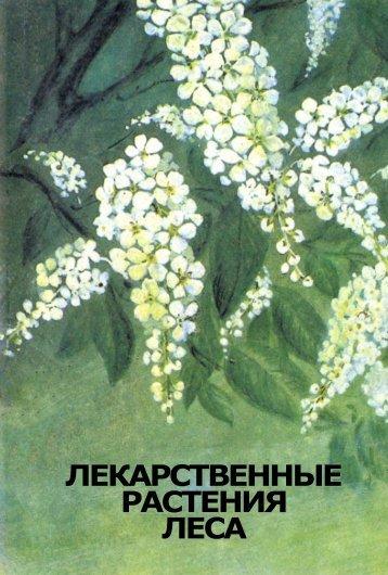 Лекарственные растения леса