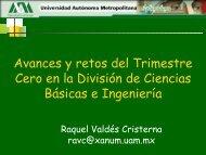 Avances y Retos del Trimestre Cero en la División de ... - CBI - UAM