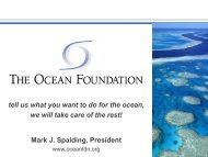 Tell us what you want to do with the Ocean - Travelers' Philanthropy