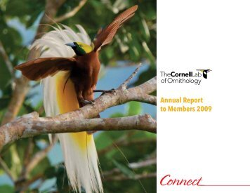 Annual Report to Members 2009 - Cornell Lab of Ornithology