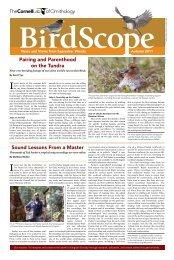 BirdScope 11 Autumn 25(4)-For Annetta(2).pdf - All About Birds