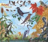 Autumn - Cornell Lab of Ornithology