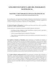 LINEAMIENTOS PARTICULARES DEL POSGRADO EN ... - CBI - UAM
