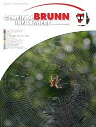 Gemeindezeitung 8/2012 - Brunn am Gebirge