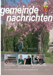 Gemeindenachrichten 2012-1 (4,53 MB) - .PDF - Biedermannsdorf