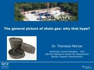 A general picture of shale gas: why the hype?