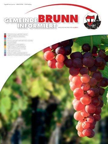 Gemeindezeitung 8/2011 - Brunn am Gebirge