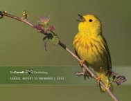 AnnuAl RepoRt to membeRs | 2012 - Cornell Lab of Ornithology