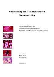 Untersuchung der Wirkungsweise von Nanomaterialien