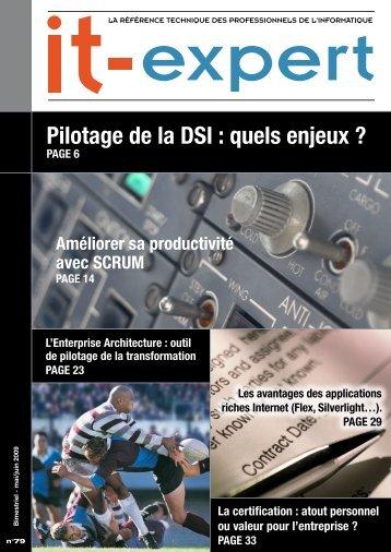 Pilotage de la DSI : quels enjeux ? - IT-expert