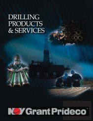 DRILLING PRODUCTS & SERVICES