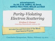 Parity violating Electron Scattering