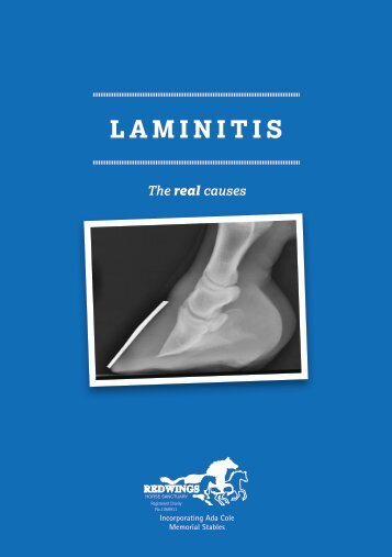 Laminitis: The Real Causes - Redwings