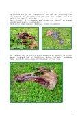 Leven na de dood, ook in het Zoniënwoud (1) - Dood Doet Leven - Page 6