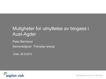 Muligheter for utnyttelse av biogass i Aust-Agder