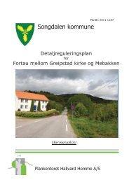 Planbeskrivelse og bestemmelser - Songdalen kommune