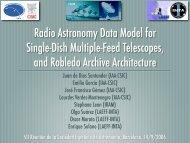 RADAMS presentation - AMIGA : Analysis of the interstellar Medium ...