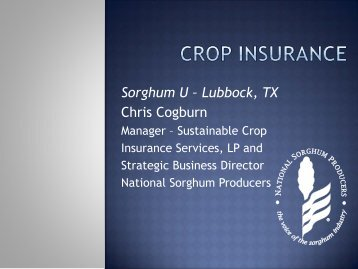 Download presentation (PDF) - Sorghum Checkoff