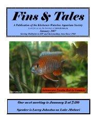 January 2007 - Kitchener Waterloo Aquarium Society