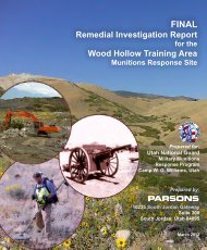 Remedial Investigation Report - Camp Williams Restoration ...