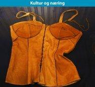 Kultur og næring - Troms fylkeskommune