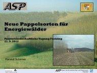 Schirmer_Neue Pappelsorten für Energiewälder.pdf