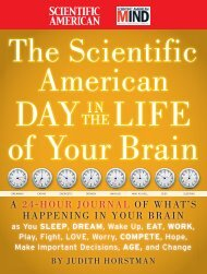 The Scientific American-Day in the Life of - Index of