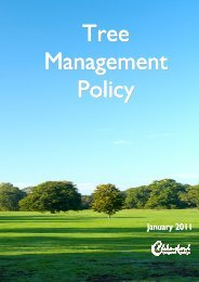 Tree Management policy - Chelmsford Borough Council