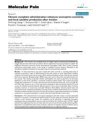 Chronic morphine administration enhances nociceptive sensitivity ...