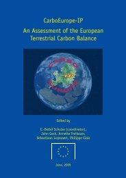 An Assessment of the European Terrestrial Carbon Balance