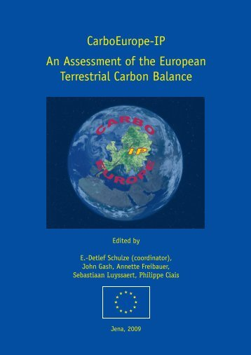 An Assessment of the European Terrestrial Carbon Balance