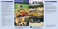 ATEAM Flyer - Potsdam Institute for Climate Impact Research
