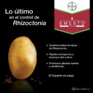 Rhizoctonia - Bayer CropScience Mexico