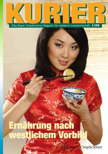 Ernährung nach westlichem Vorbild